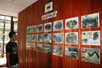 Giant Clam & Marine Invertebrate Hatchery