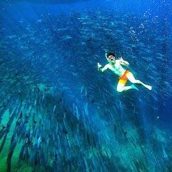 Snorkeling in Sipadan